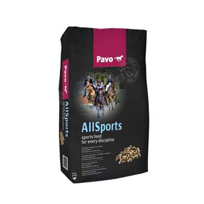 Pavo -  AllSports