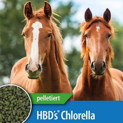 HBD's® CHLORELLA PYRENOIDOSA