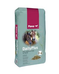 Pavo - DailyPlus